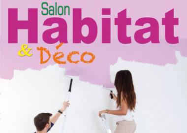 affiche-salon-habitat-et-deco-ecoblast2